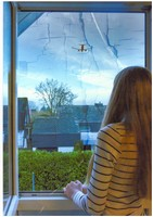 Ich schaue aus meinem Fenster …